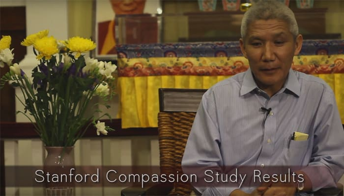 Video: Stanford Compassion Study Results with Thupten Jinpa, Ph.D.