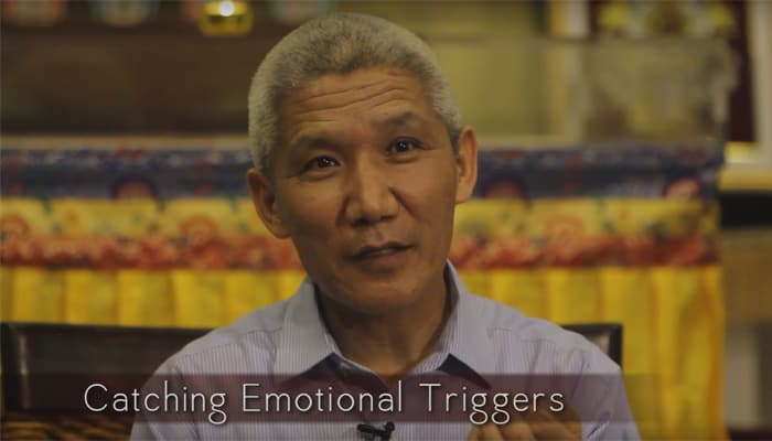 Video: Catching Emotional Triggers with Thupten Jinpa, Ph.D.