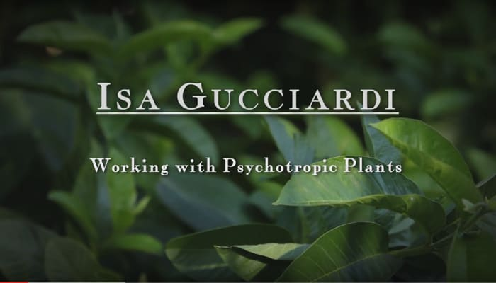 Video: Working with Psychotropic Plants with Isa Gucciardi