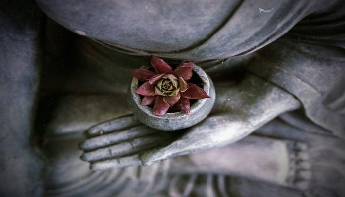 Buddhist Meditation in Depth Hypnosis