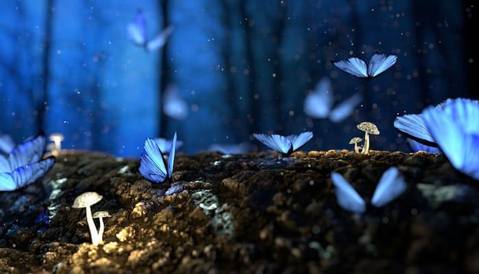Blog: Ask Isa: Manifesting Vs. Magical Thinking