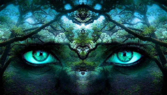 Video: How the Shamanic Journey Illuminates the Inner World