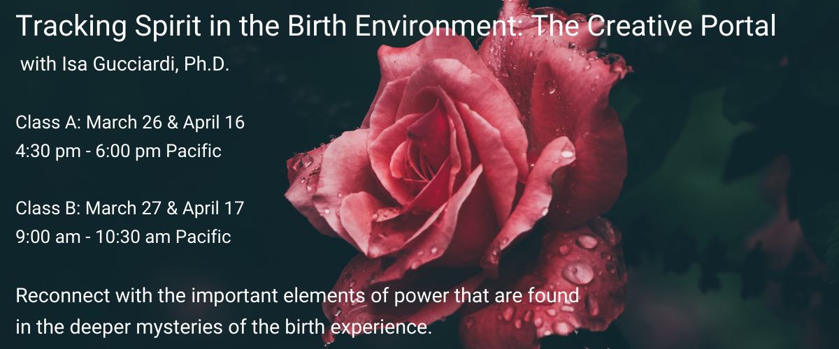 Tracking-Spirit-in-the-Birth-Enviornment_Slider
