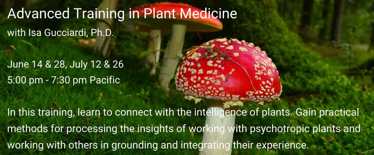 Plant-Medicine_Slider
